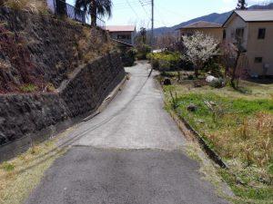 東側接道道路写真
